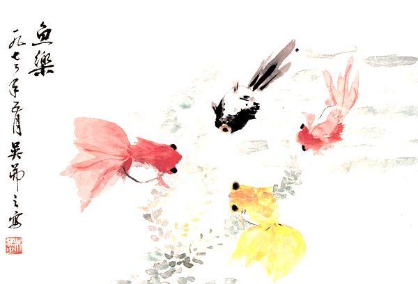金鱼图 - 国画 - 当代书画名家网