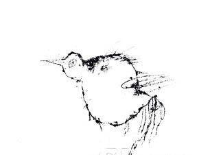 """绘画大师叶永青拍出25万元天价的""""鸟""""涂鸦图片"""